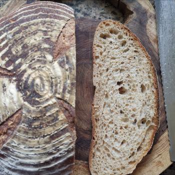 P. MADRE Sourdough bread of Rye, Wheat or Spelt, Sourdough banana bread, Focaccias  first overview