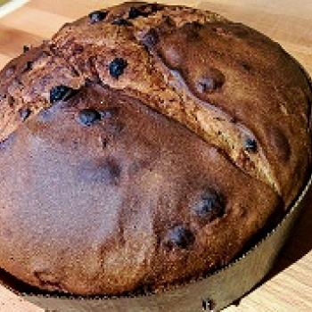 Priscilla Panettone first overview
