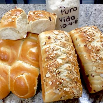 Pura Vida difrents Bread first slice