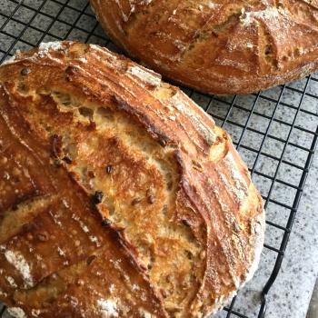 Rabban the Beast Pain de campagne first overview