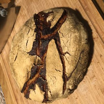 Robert Rye Wheat Sourdough bread first overview