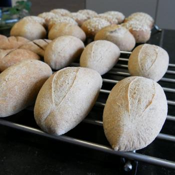 Roger Small Sourdough Rolls first overview
