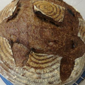 Sally Sourdough bread second slice