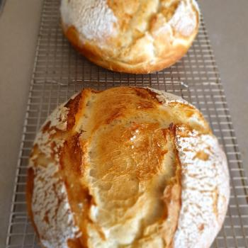 SilverSmith Sourdough  first overview