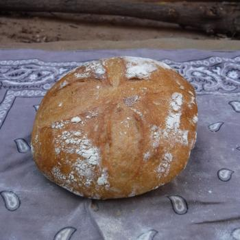 Sinchu Omar Starter Sourdough Boule second slice