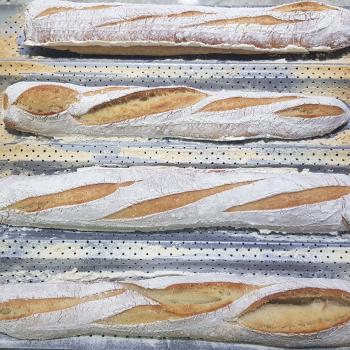 Sofia Pan de campo y barras second slice