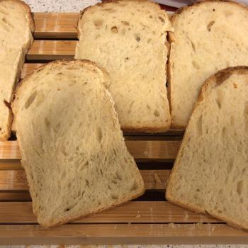 Sophia Sandwich bread first overview
