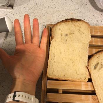 Sophia Sandwich bread first slice