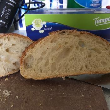 Sophia t65 sourdough bread second slice