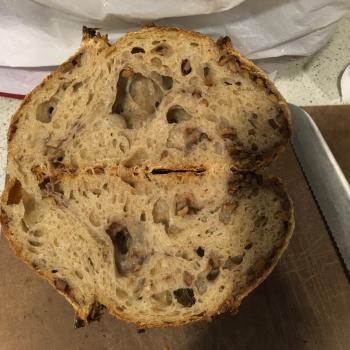 Sophia walnut spelt t80 sourdough loaf first overview