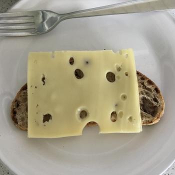 Sophia walnut spelt t80 sourdough loaf second slice