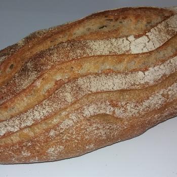 Spelt Sourdough Bread first overview