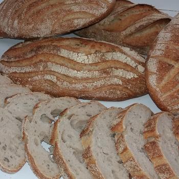 Spelt Sourdough Bread first slice