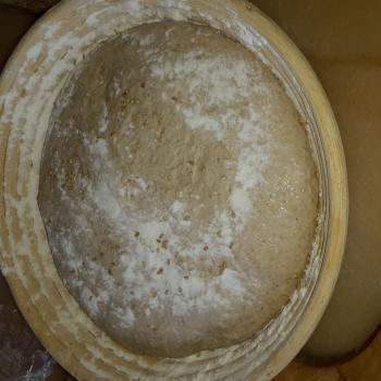Spirito Mild Tartine Bread first overview