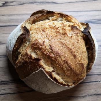Srđan Bread second overview