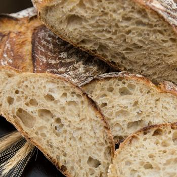 Susie Breads: second overview