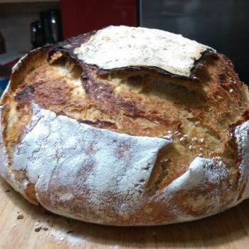 Tam buğday ekşimaya Tambuğday ekmeği first overview