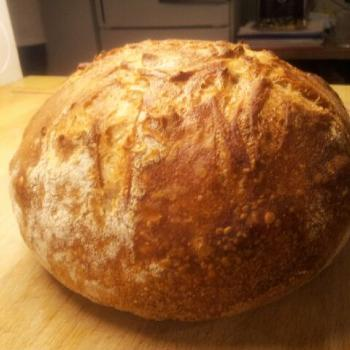 The Creature (Mark II) Worlds easiest and most delicious dutch oven bread first overview
