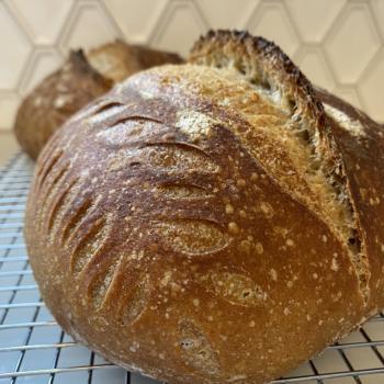 The Fabulous Karen   Sourdough bread first overview