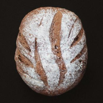 The son Rye bread first overview
