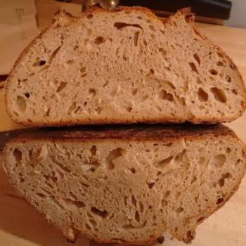 Tony Edison whole wheat & Glenn Emmer whole wheat second overview