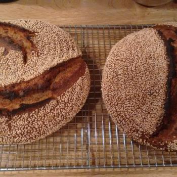 Tony Whole wheat and Rye  second slice