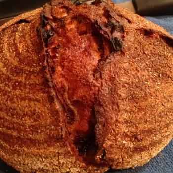 Tony Whole wheat raisin walnut first overview