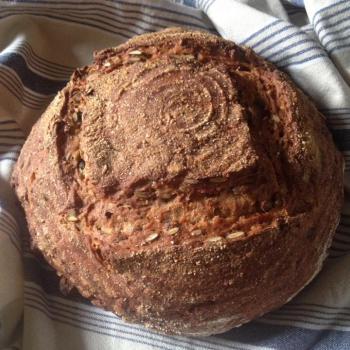 Vera Bread second overview