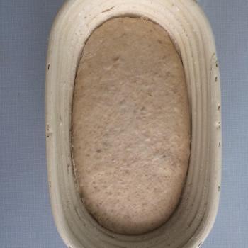Mishka jar shot